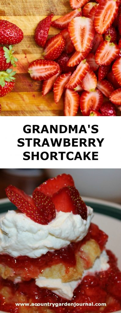 GRANDMA'S STRAWBERRY SHORTCAKE, A COUNTRY GARDEN JOURNAL