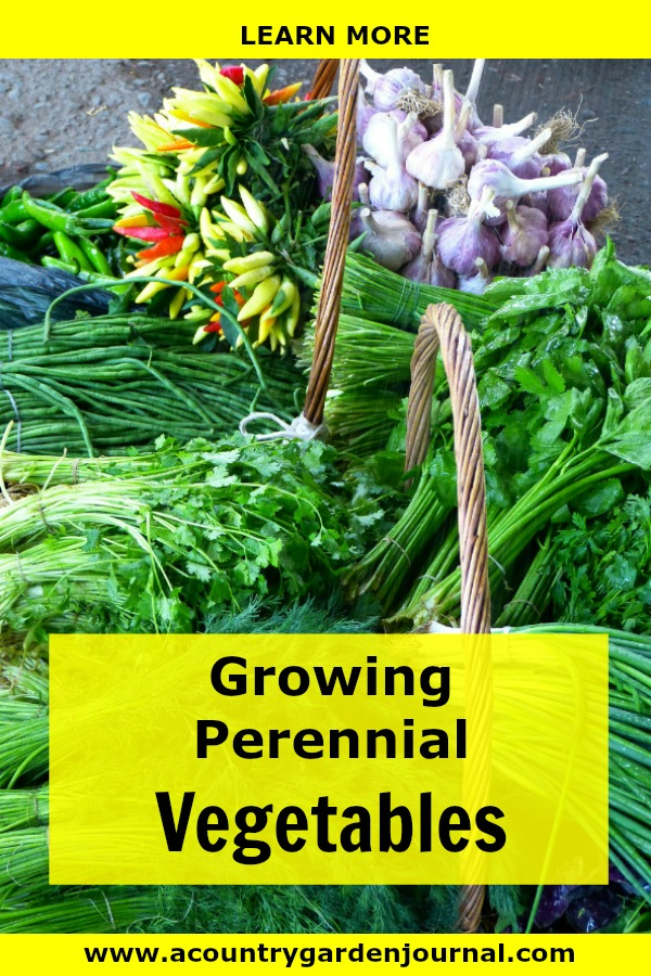 GROWING PERENNIAL VEGETABLES, A COUNTRY GARDEN JOURNAL