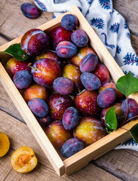 Plums in a Box