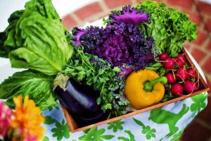 Vegetables In Bowl, A COUNTRY GARDEN JOURNAL