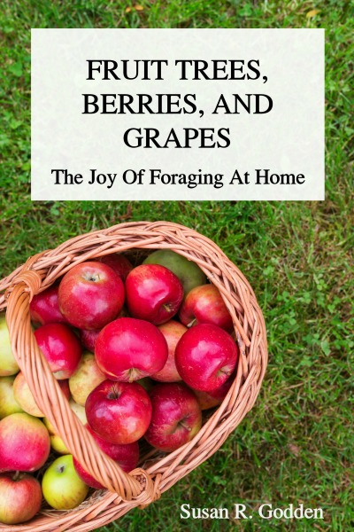 FRUIT TREES, BERRIES, AND GRAPES: The Joy Of Foraging At Home