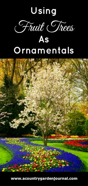 ORNAMENTALS, A COUNTRY GARDEN JOURNAL