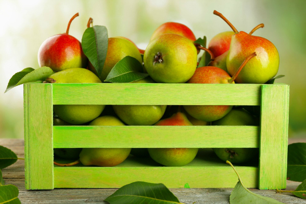 Pears In A Green Box