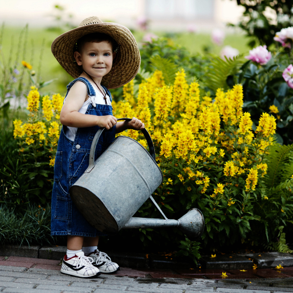 Boy With Watering Can and Yellow Flowers