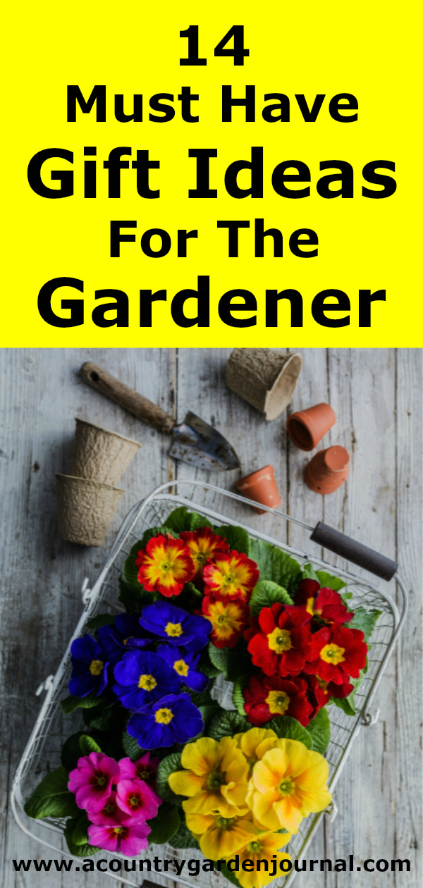Primroses and Gardening Tools on a Yellow Background